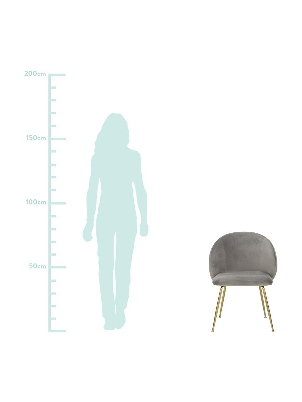 Samt-Polsterstühle Luisa, 2 Stück, Beine: Metall, lackiert, Samt Hellgrau, Gold, B 59 x T 58 cm