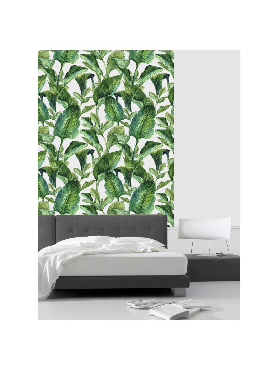 Selbstklebende Tapete Leaves, Selbstklebende Vinylfolie, Weiß, Grün, 90 x 250 cm