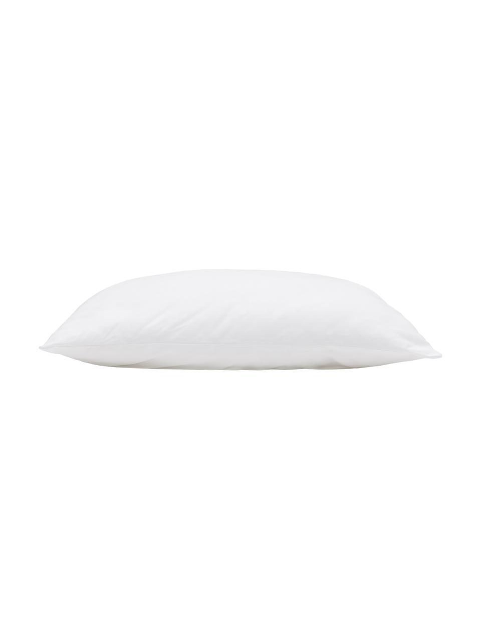 Wkład do poduszki dekoracyjnej z mikrofibry Sia, 60x60, Biały, S 60 x D 60 cm