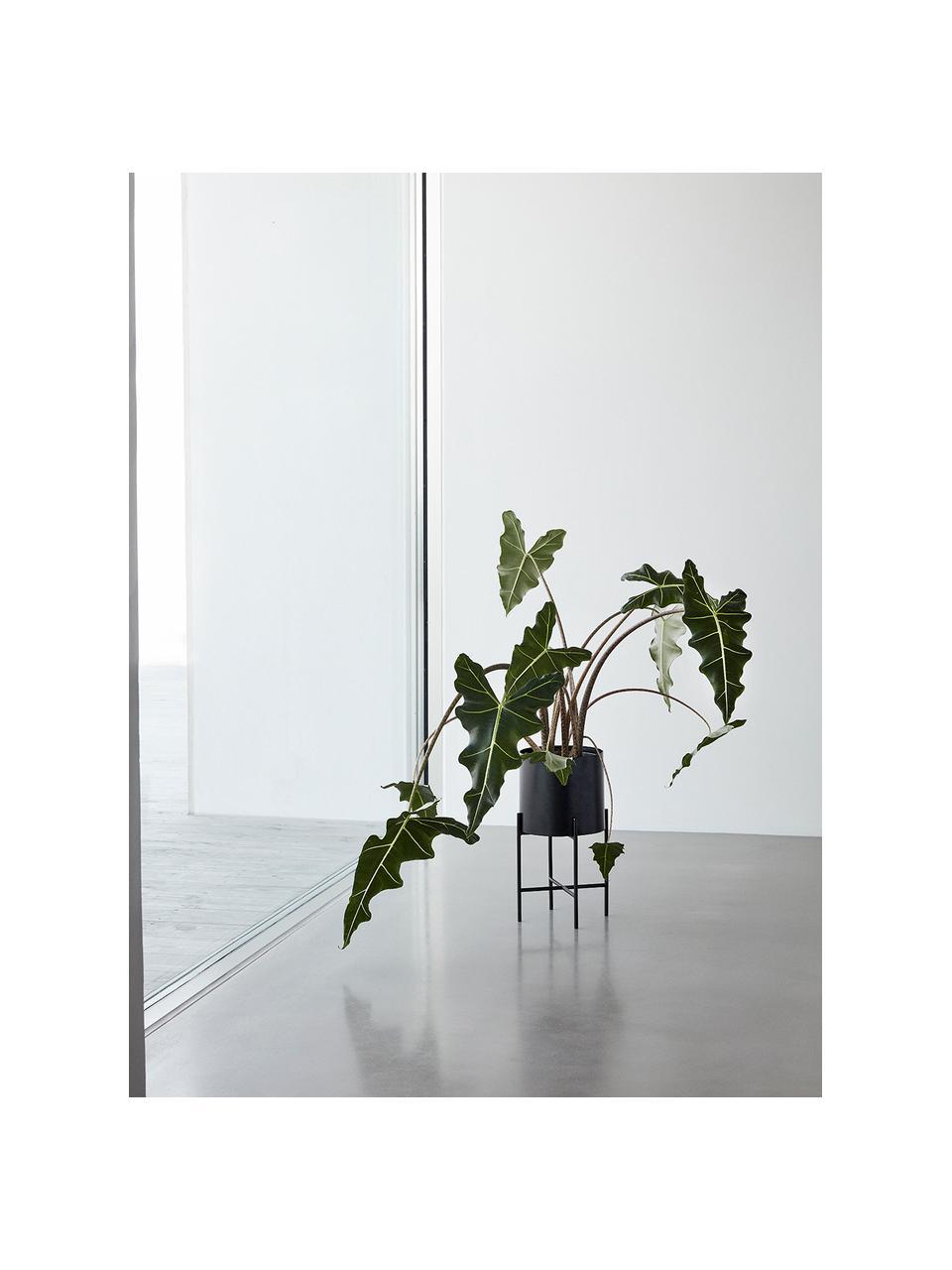 Plantenpottenset Mina van metaal, 2-delig, Metaal, Mat zwart, Set met verschillende formaten