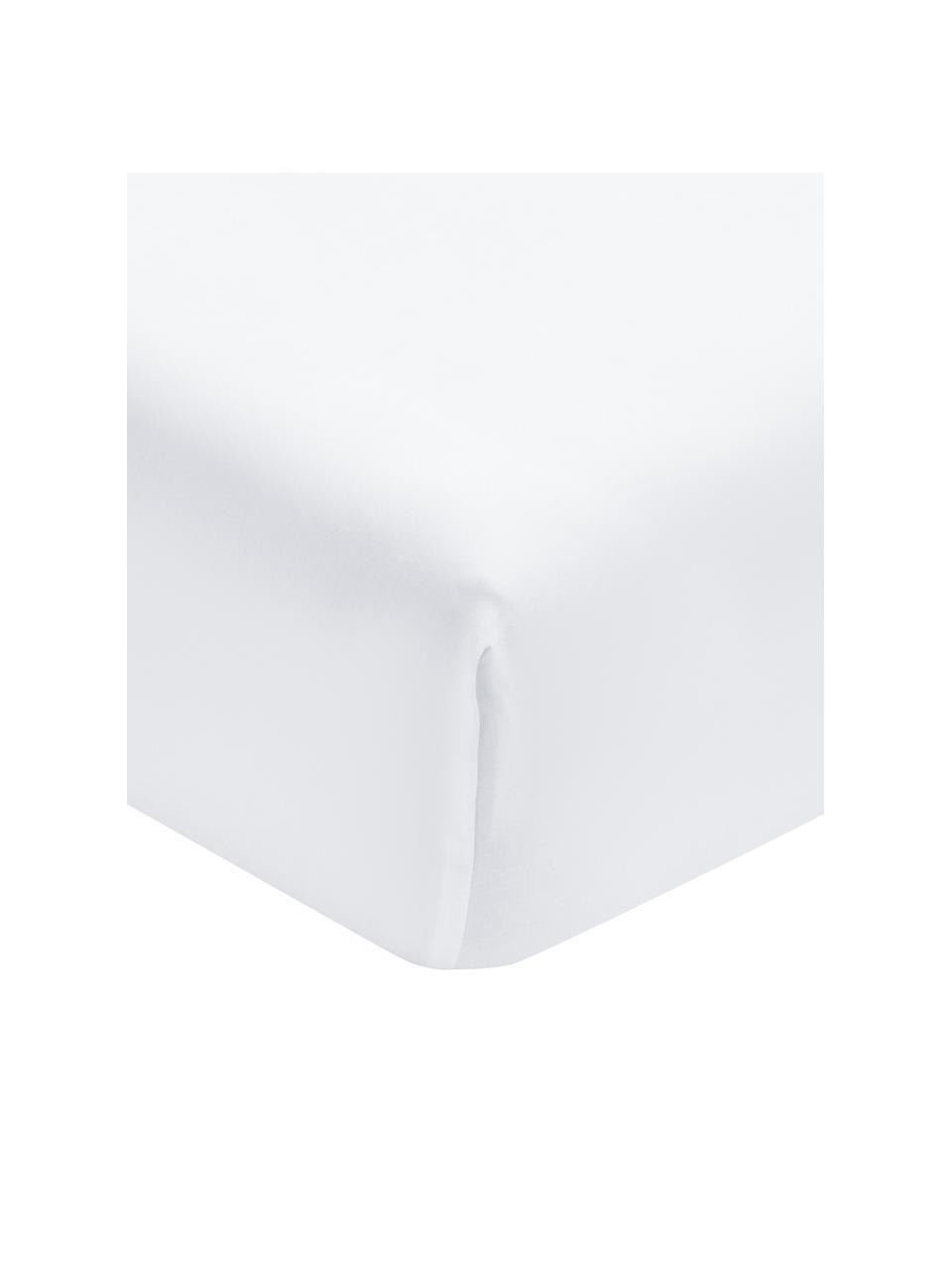 Lenzuolo con angoli in cotone biologico bianco Premium, Bianco, Larg. 160 x Lung. 200 cm