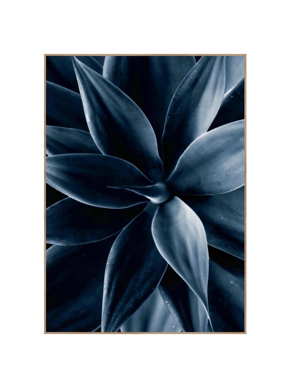 Zarámovaný digitální tisk Dark Plant I, Černá, modrá