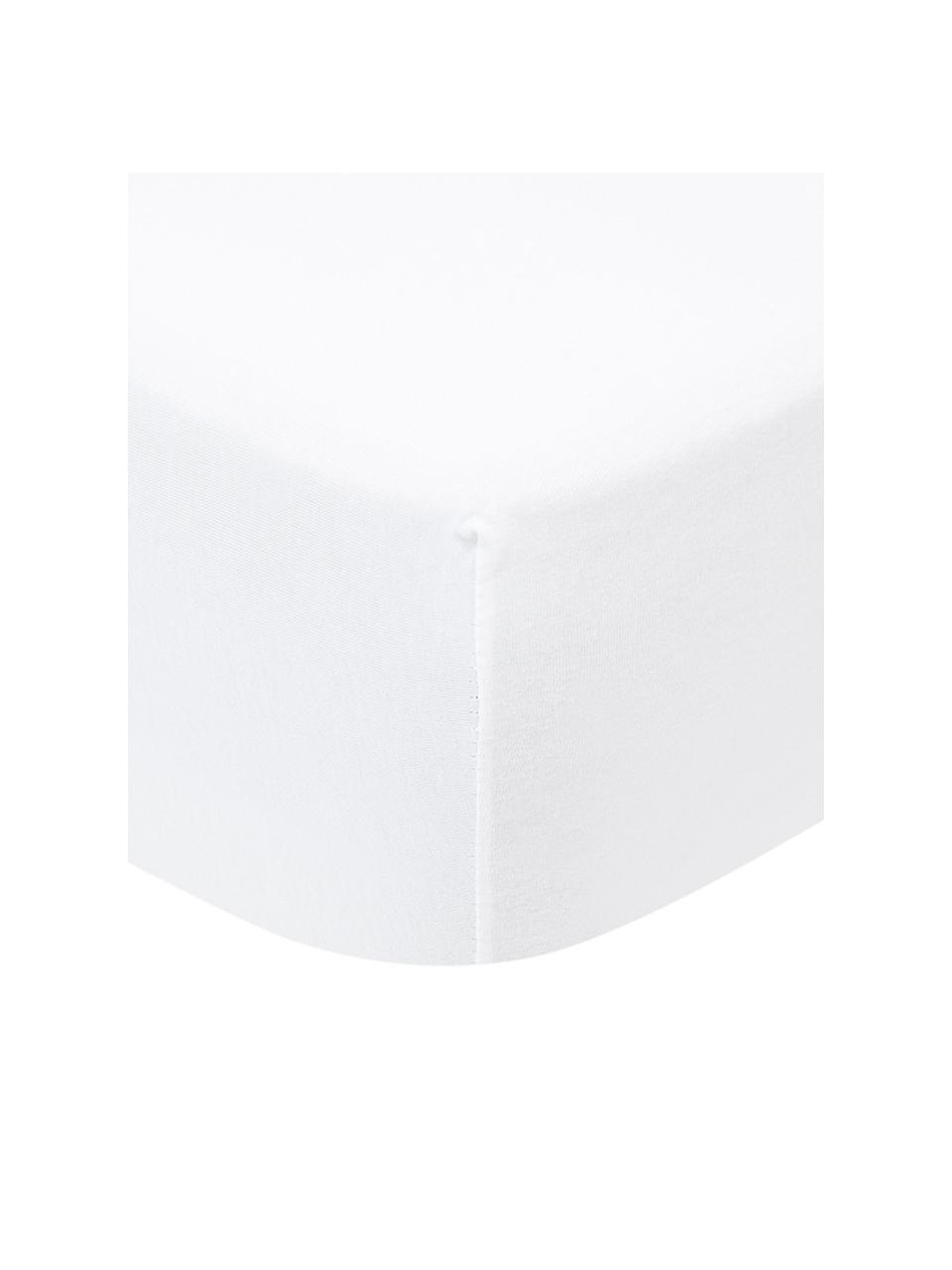 Lenzuolo con angoli boxspring in jersey-elastan bianco Lara, 95% cotone, 5% elastan, Bianco, Larg. 180 x Lung. 200 cm