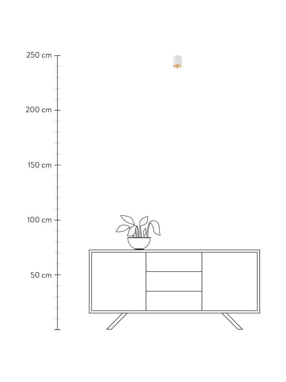 LED-Deckenspot Marty, Weiß, Goldfarben, Ø 10 x H 12 cm