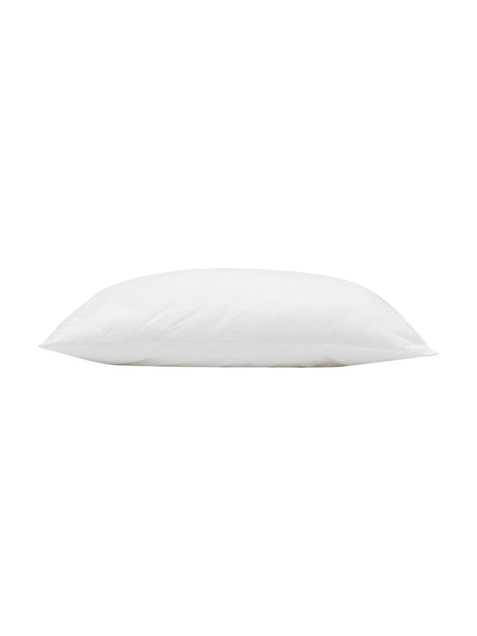Kissen-Inlett Sia, 50x50, Microfaser-Füllung, Hülle: 100% Baumwolle, Weiß, 50 x 50 cm