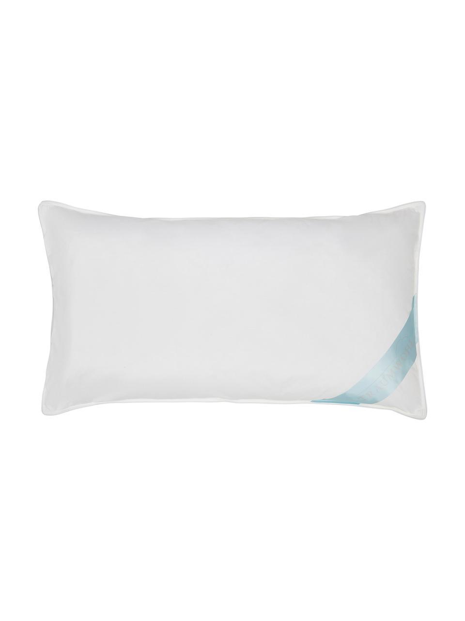 Nackenstützkissen Viscoflow Fibre, fest, Hülle: 100% Baumwolle (Mako-Eins, Außen: Polyester (Hohlfaserkugel, Weiß, 40 x 80 cm