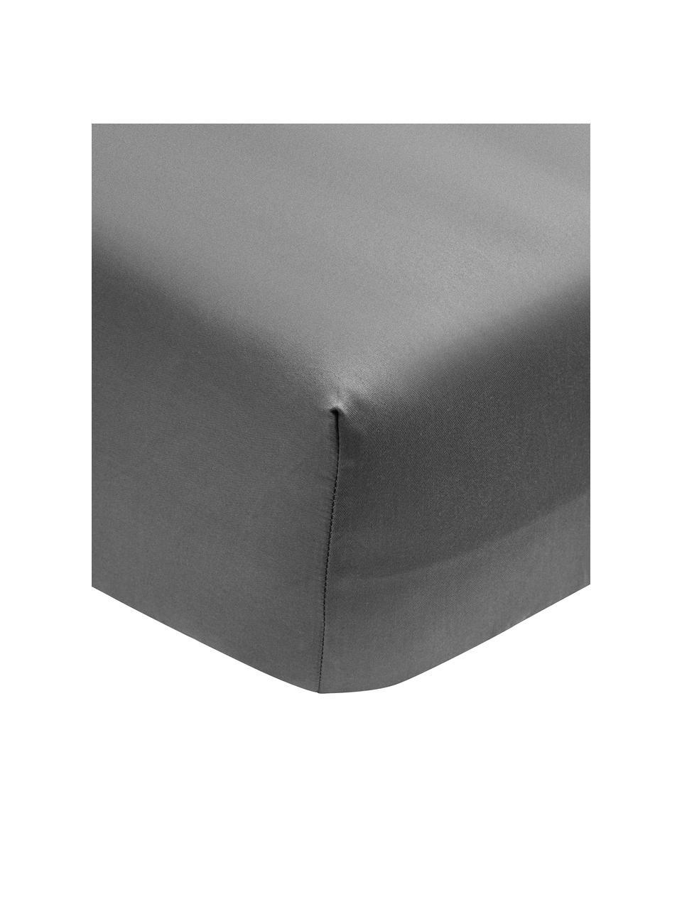 Hoeslaken Premium van biokatoen in donkergrijs, satijn, Weeftechniek: satijn Draaddichtheid 400, Donkergrijs, 180 x 200 cm