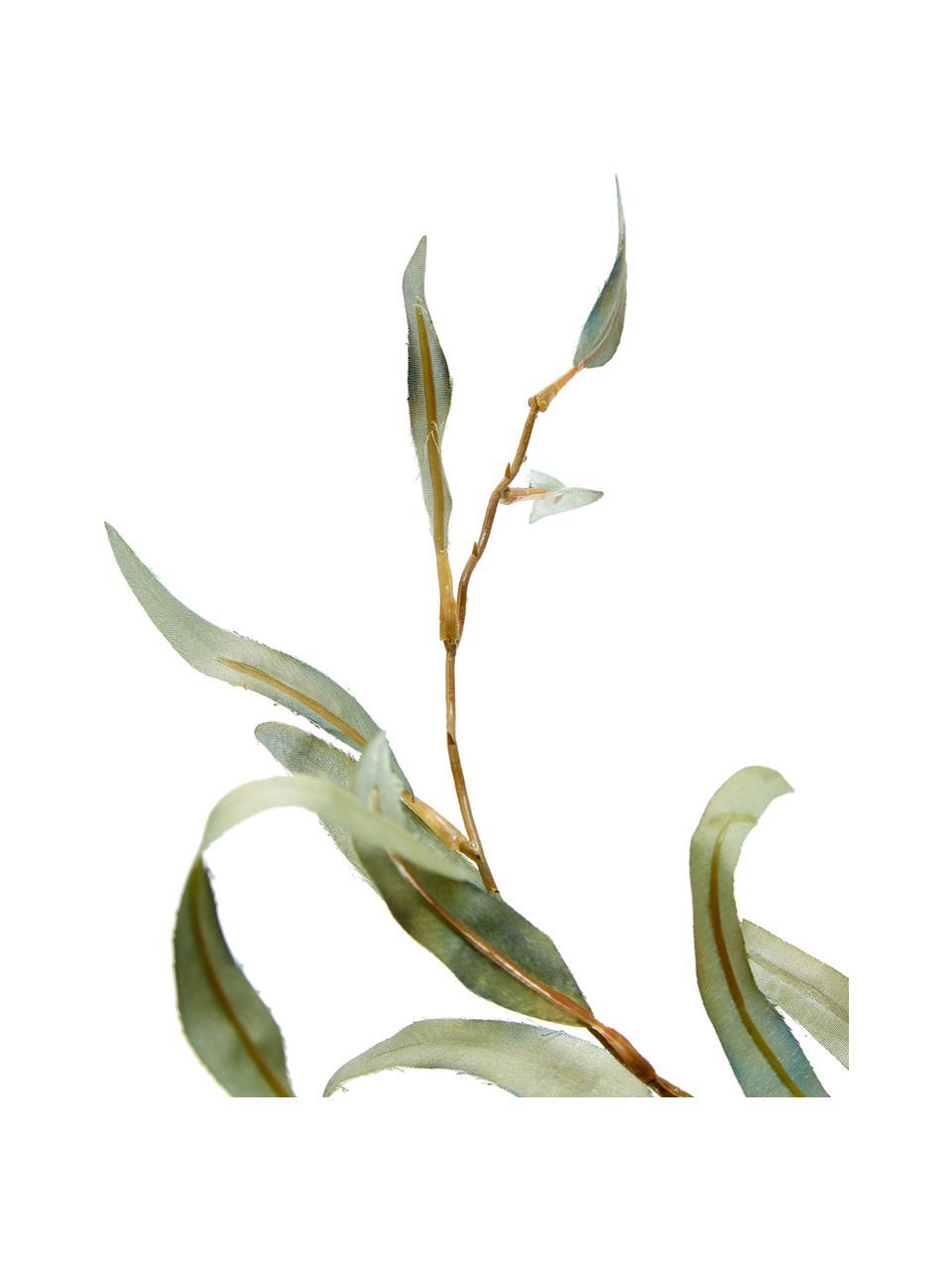 Fiore artificiale eucalipto Pati, Materiale sintetico, Verde, Lung. 96 cm