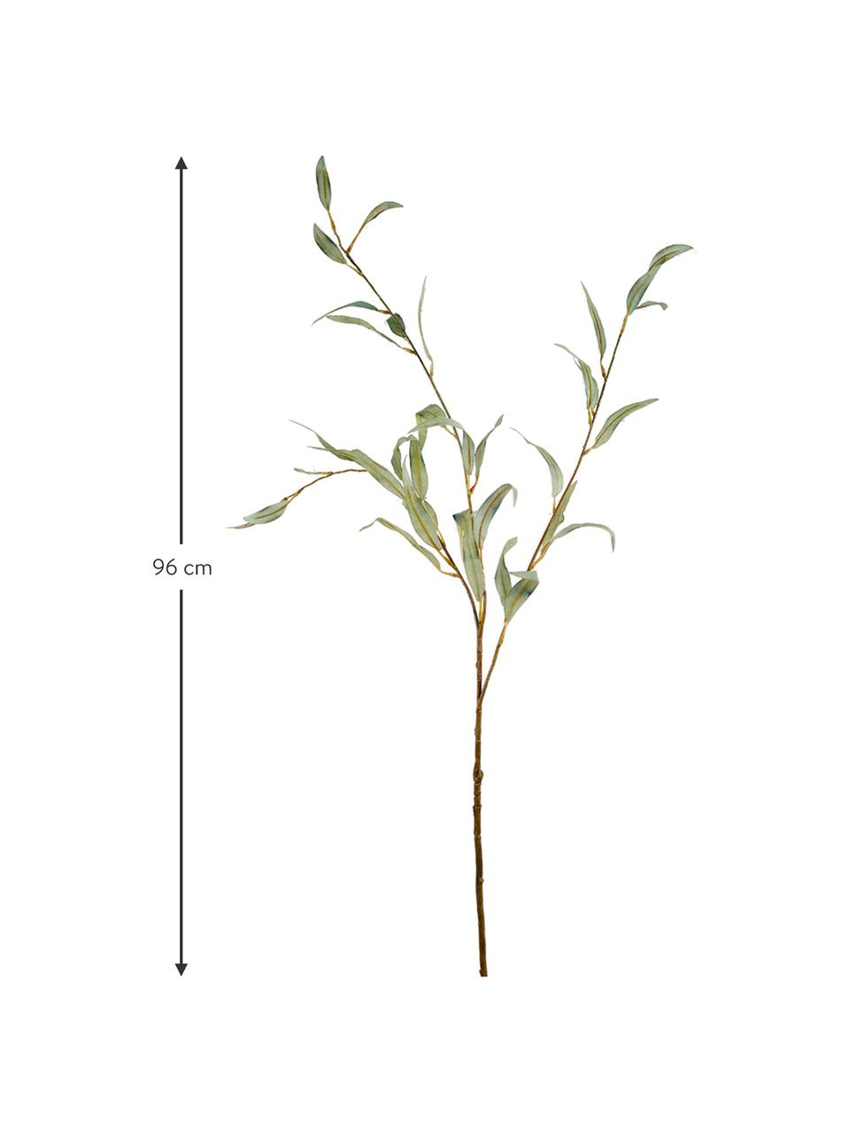 Sztuczny kwiat eukaliptusu Pati, Tworzywo sztuczne, Zielony, D 230 x W 10 cm