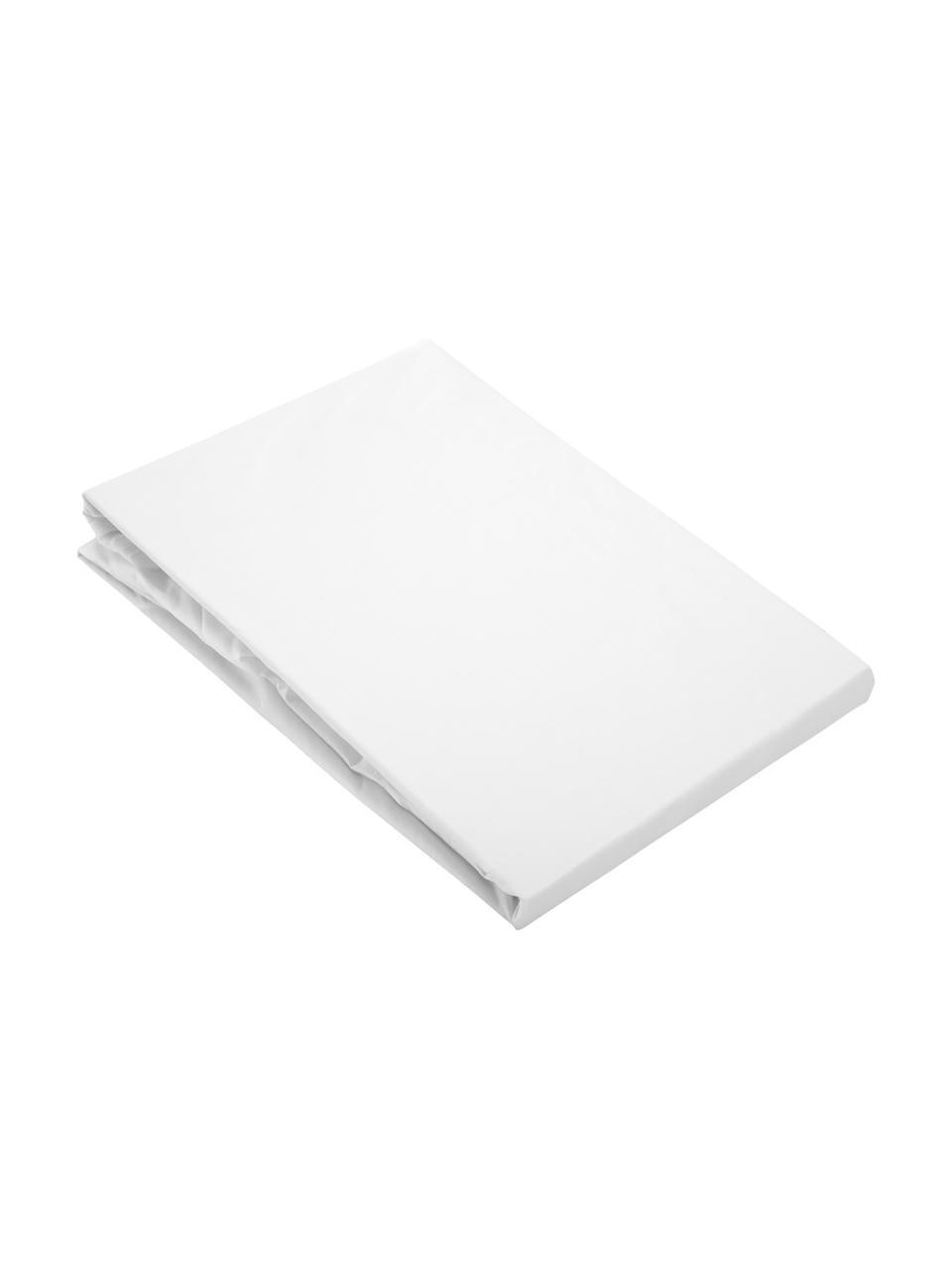 Drap-housse blanc en percale Elsie, Blanc