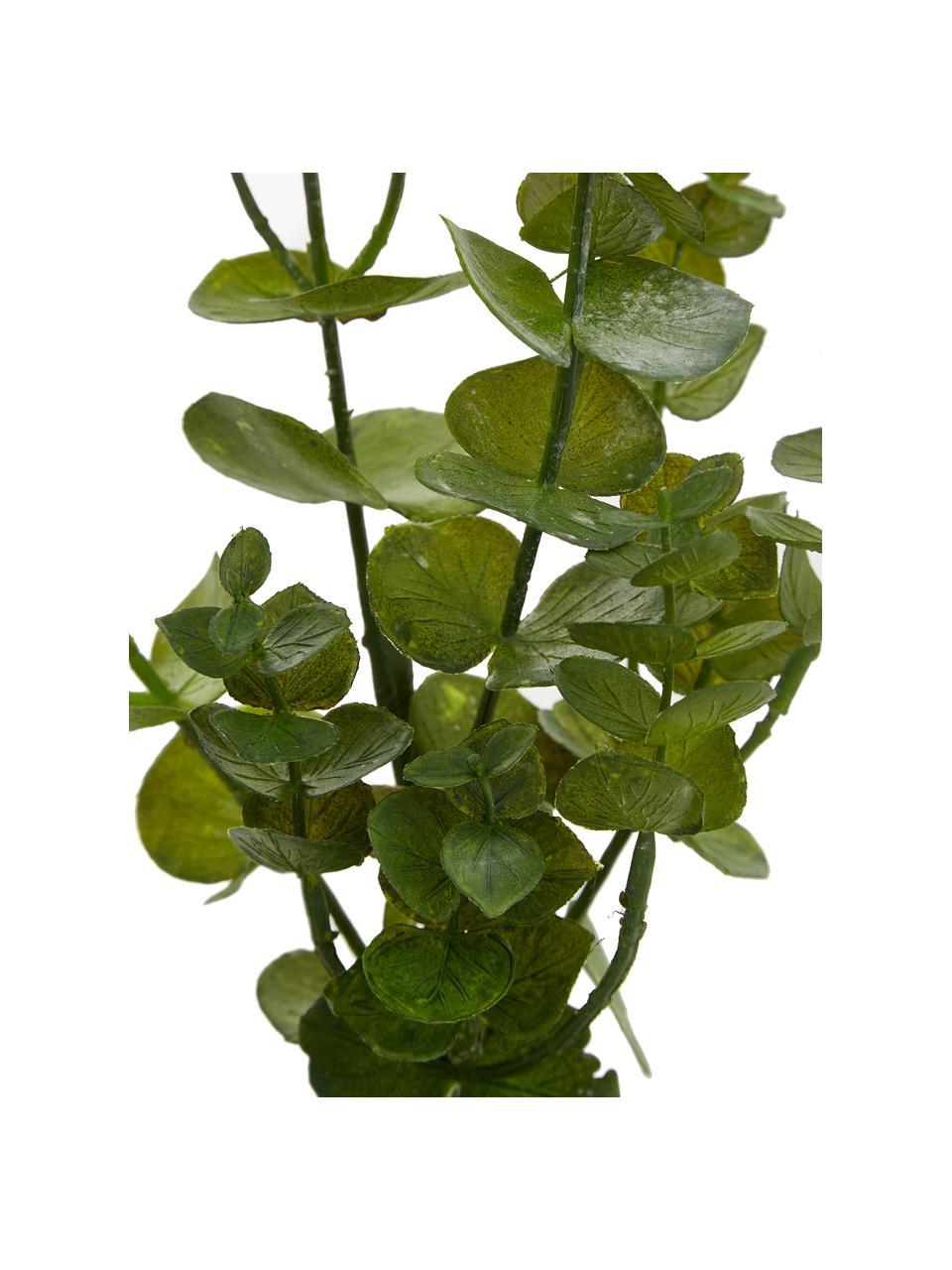 Fleur artificielle Eucalyptus, Vert