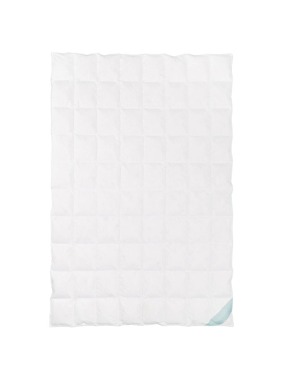 Daunen-Bettdecke Comfort, extra leicht, Hülle: 100% Baumwolle, feine Mak, extra leicht, 135 x 200 cm