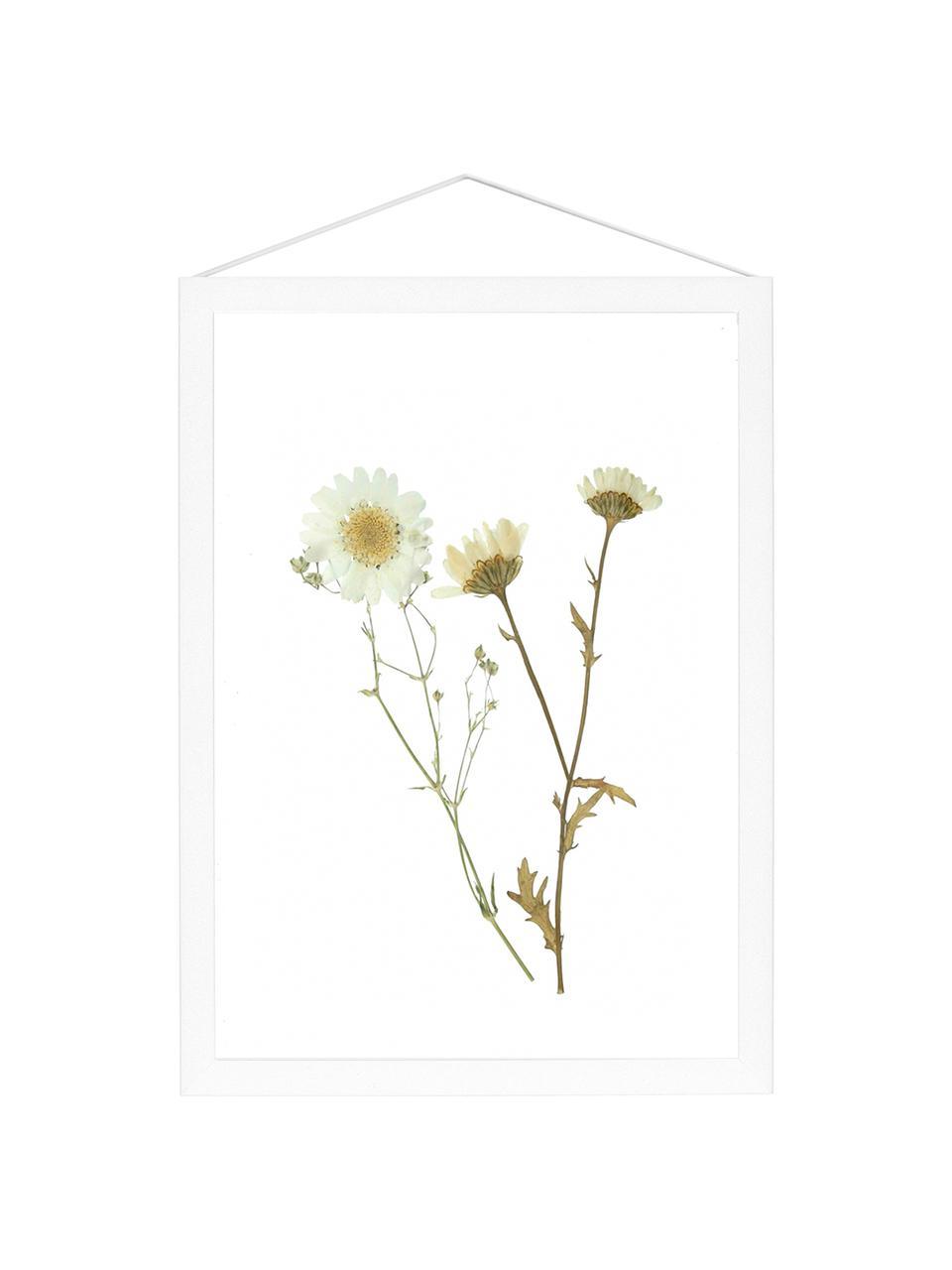 Cornice bianca Frame, Cornice: alluminio verniciato a po, Cornice: bianco Sospensione: nero Fronte e retro: trasparente, Larg. 17 x Alt. 23 cm