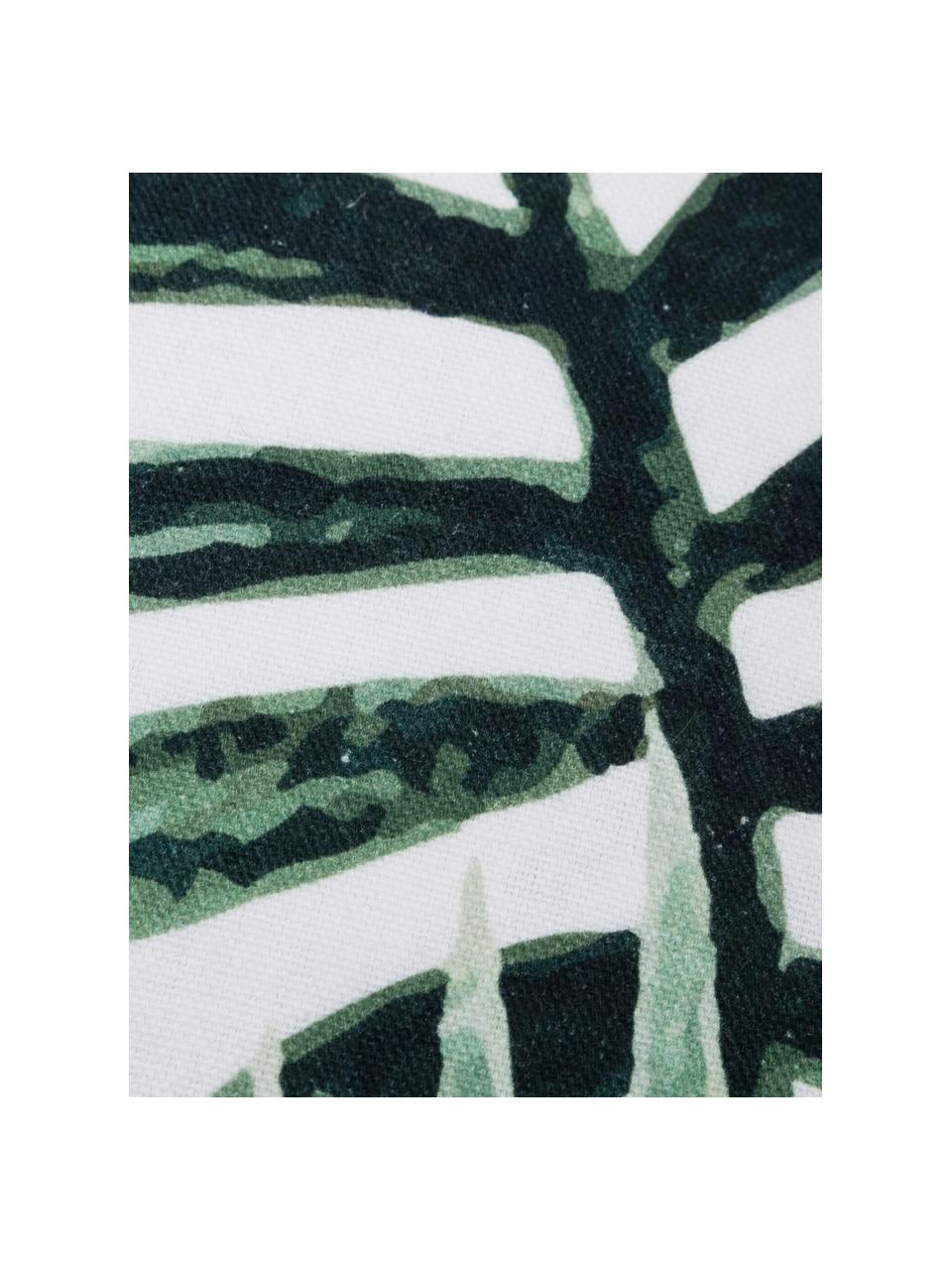 Federa arredo con motivo foglie Coast, 100% cotone, Verde, bianco, Larg. 40 x Lung. 40 cm