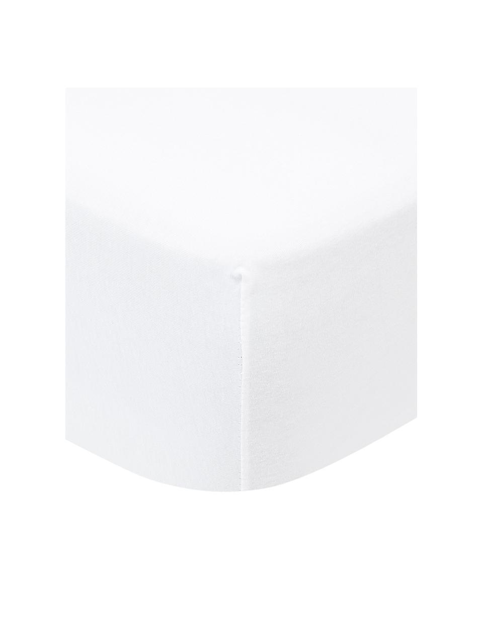 Hoeslaken Lara in wit, jersey-elastaan, 95% katoen, 5% elastaan, Wit, 140 x 200 cm