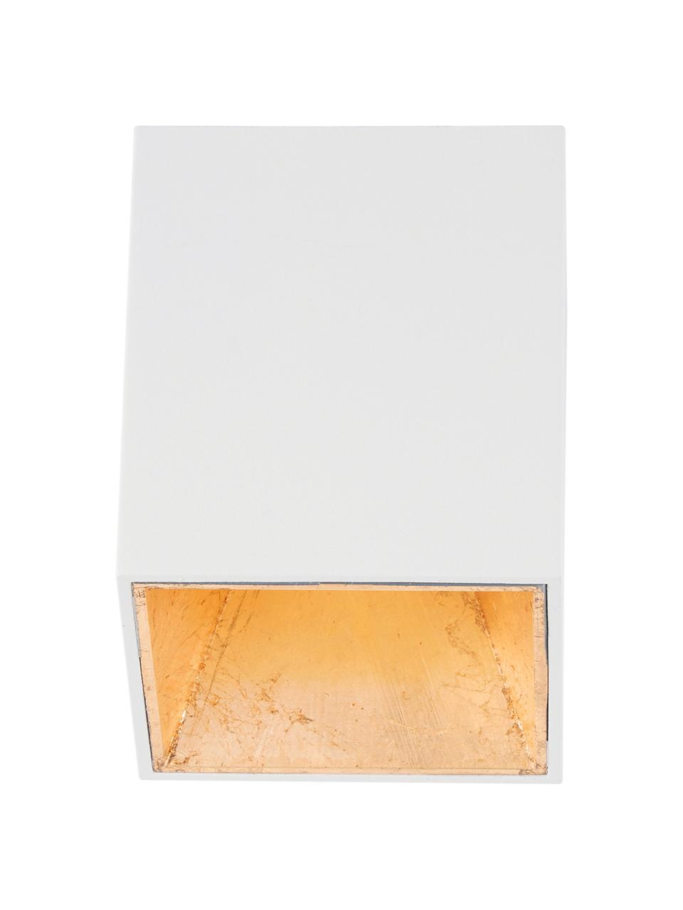 Lampa spot LED Marty, Biały, odcienie złotego, S 10 x W 12 cm