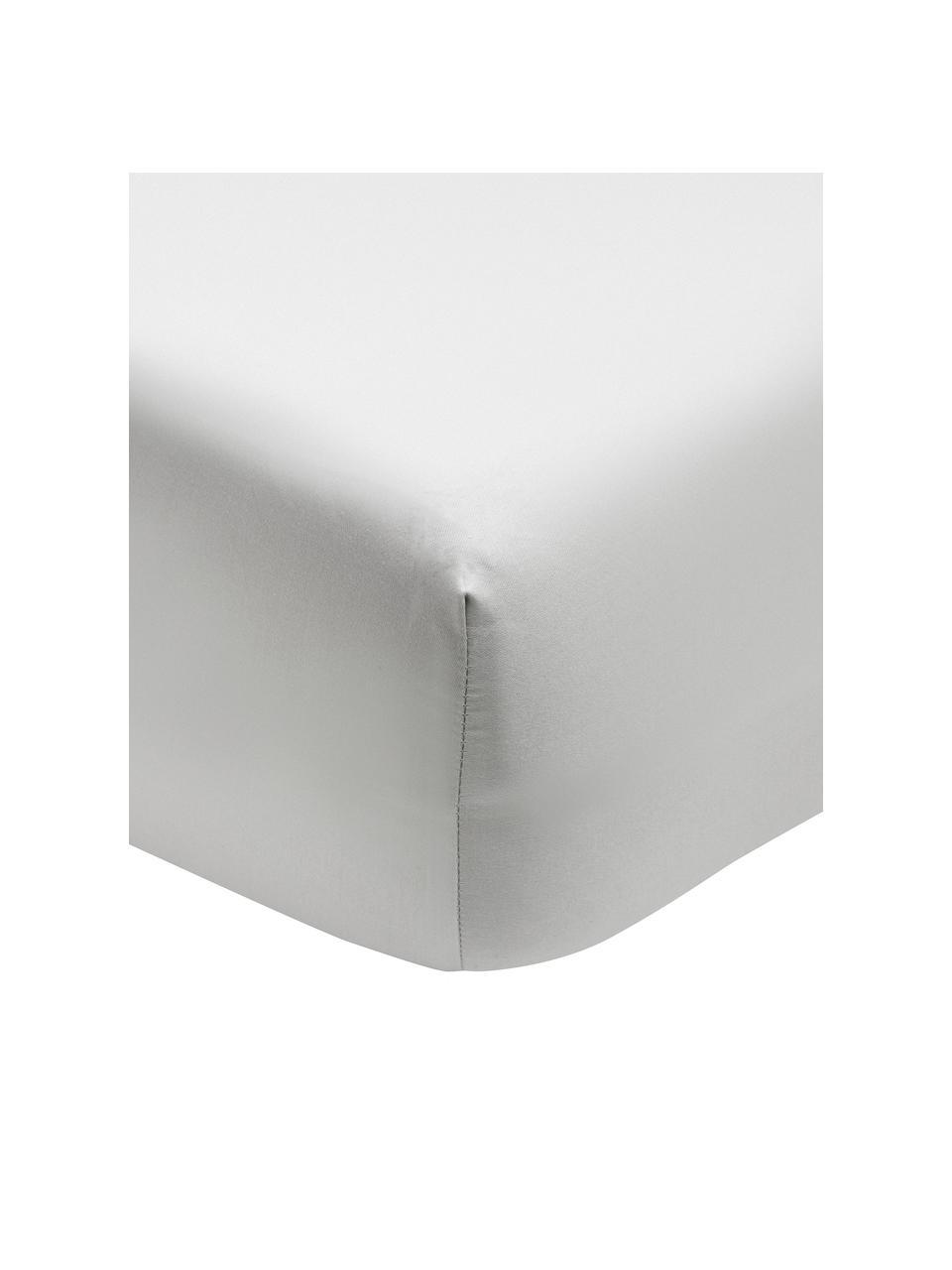 Hoeslaken Premium van biokatoen in lichtgrijs, satijn, Weeftechniek: satijn Draaddichtheid 400, Lichtgrijs, 180 x 200 cm