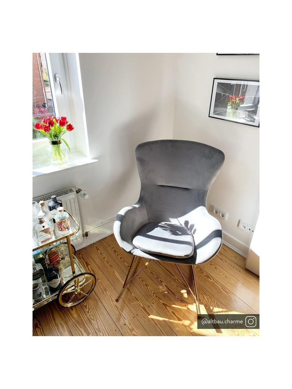 Sedia a dondolo in velluto grigio Wing, Rivestimento: velluto (poliestere) Con , Struttura: metallo zincato, Velluto grigio, Larg. 66 x Prof. 102 cm