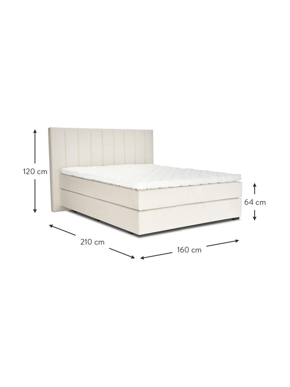Premium Samt-Boxspringbett Lacey in Beige, Matratze: 7-Zonen-Taschenfederkern , Füße: Massives Buchenholz, lack, Samt Beige, 160 x 200 cm