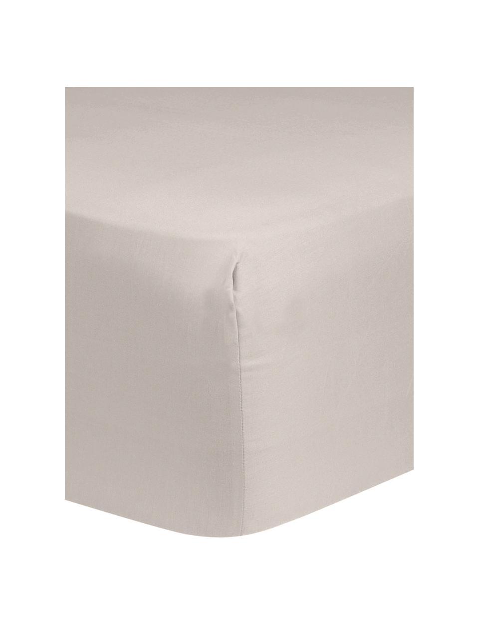 Spannbettlaken Comfort in Taupe, Baumwollsatin, Webart: Satin, leicht glänzend, Taupe, 160 x 200 cm