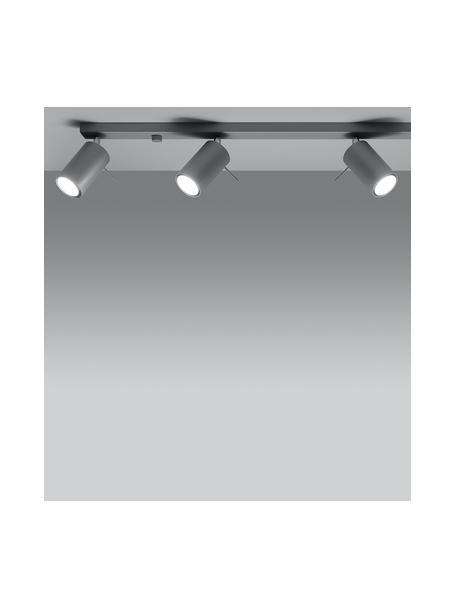 Plafondspot Etna in grijs, Baldakijn: gelakt staal, Grijs, 80 x 15 cm