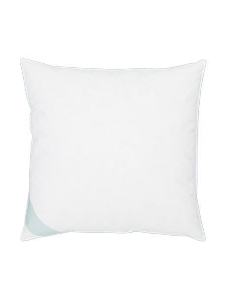 Poduszka z pierza Comfort, średnio twarda, Biały z turkusową satynową lamówką, S 80 x D 80 cm