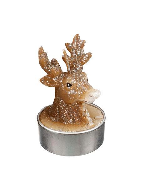 Teelichter Deer, 6 Stück, Wachs, Braun, Ø 4 x H 6 cm