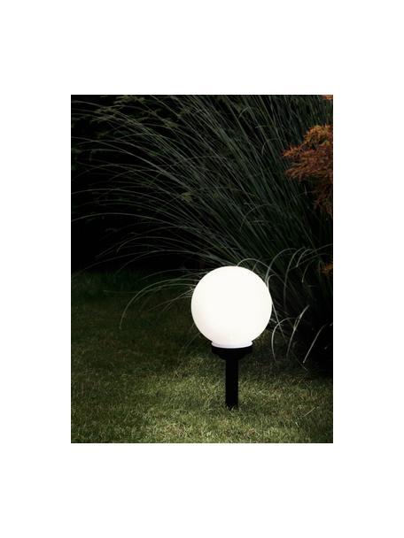 Solar Bodenleuchte Zindy, Lampenschirm: Kunststoff, Schwarz, Weiß, Ø 20 x H 40 cm