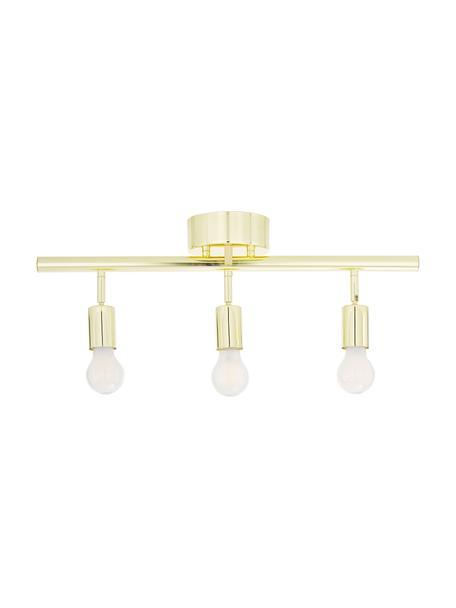 Plafondspot Row in goudkleur, Baldakijn: gelakt messing, Messingkleurig, 60 x 40 cm