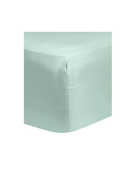 Spannbettlaken Comfort in Salbeigrün, Baumwollsatin, Webart: Satin, leicht glänzend, Salbeigrün, 90 x 200 cm