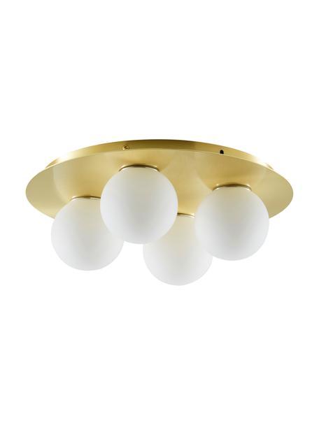 Plafond- en wandlamp Hitch van opaalglas, Baldakijn: vermessingd metaal, Baldakijn en fitting: mat messingkleurig. Lampenkappen: wit, Ø 36 x H 12 cm
