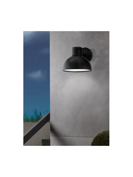 Outdoor wandlamp Entrimo in zwart, Lampenkap: verzinkt staal, Diffuser: kunststof, Zwart, 20 x 19 cm