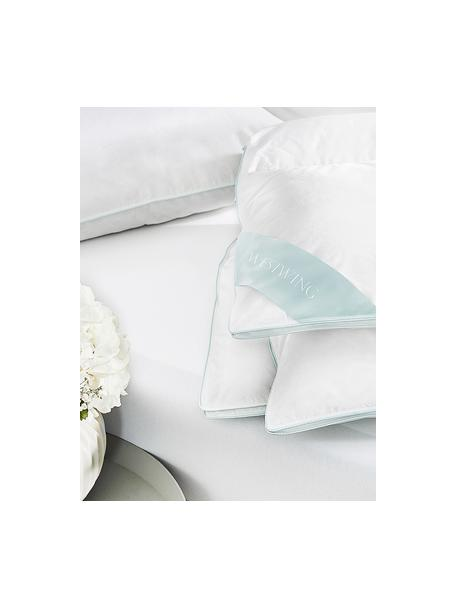 Edredón de plumón Komfort, medio, Funda: 100%algodón, sarga de Ma, Blanco, Cama 150/160 cm (240 x L 220 cm)