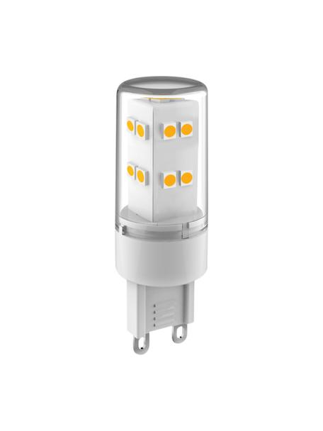 G9 peertje, 3.3W, neutraal wit, 1 stuk, Lampenkap: glas, Fitting: aluminium, Transparant, Ø 2 x H 6 cm