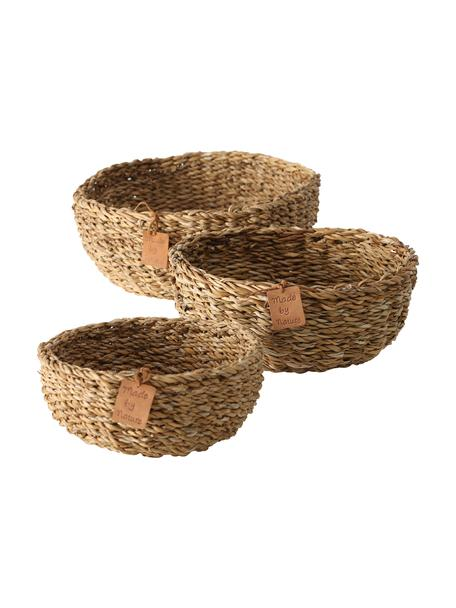 Set 3 cestini in alghe Sophy, Alghe, Beige, Set in varie misure