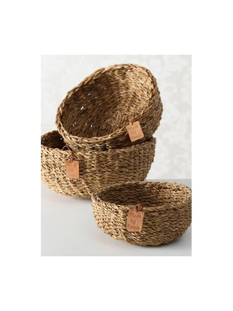 Set de cestas de seegras, 3er-Set, Algas marinas, Beige, Set de diferentes tamaños