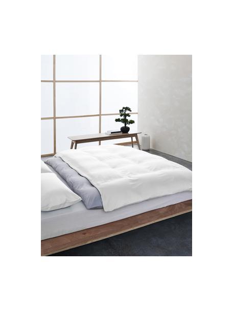 Bambus-Kopfkissenbezüge Skye in Weiß, 2 Stück, 55% Bambus, 45% Baumwolle  Fadendichte 400 TC, Premium Qualität  Bambus ist hypoallergen und antibakteriell. Daher eignet das Material sich hervorragend für empfindliche Haut. Es ist amungsaktiv und absorbiert Feuchtigkeit, um so die Körpertemperatur im Schlaf zu regulieren., Weiß, 40 x 80 cm