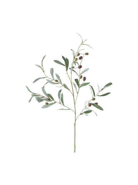 Fiore di ulivo artificiale fatto a mano Olives Garden, Materiale sintetico, Verde, Larg. 17 x Alt. 77 cm