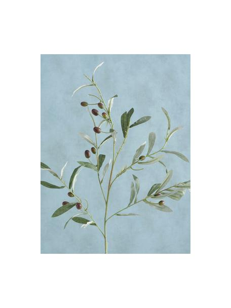 Ręcznie wykonane sztuczne drzewko oliwne Olives Garden, Tworzywo sztuczne, Zielony, S 17 x W 77 cm