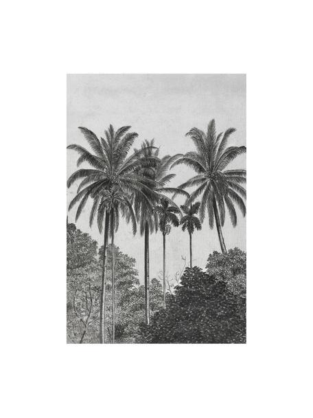 Papel pintado Palms, Tejido no tejido, Gris, negro, blanco, An 200 x Al 300 cm