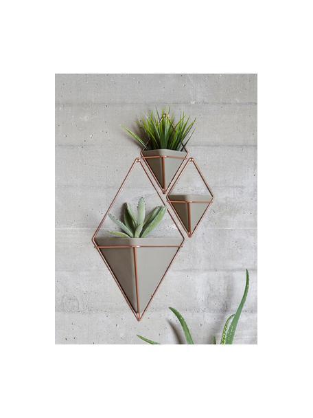 Set de maceteros de pared Trigg, 2uds., Recipiente: cemento, Gris, cobre, An 11 x Al 18 cm