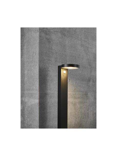 Solar padverlichting Rica met bewegingssensor, Lampenkap: kunststof, Lampvoet: gecoat staal, Zwart, 15 x 60 cm