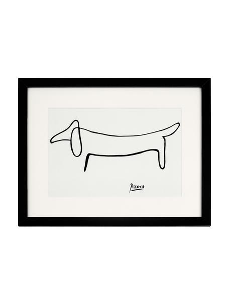 Lámina decorativa Dog From Pablo Picasso, Blanco, negro, An 43 x Al 33 cm