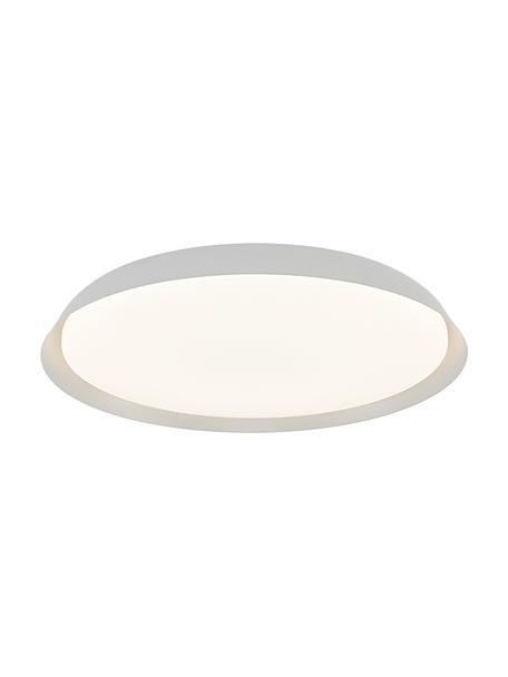 Plafoniera a LED bianca Piso, Paralume: metallo rivestito, Bianco, Ø 37 x Alt. 5 cm