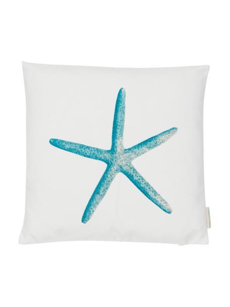 Funda de cojín Starfish, 100%algodón de canvas, Azul, blanco, An 45 x L 45 cm
