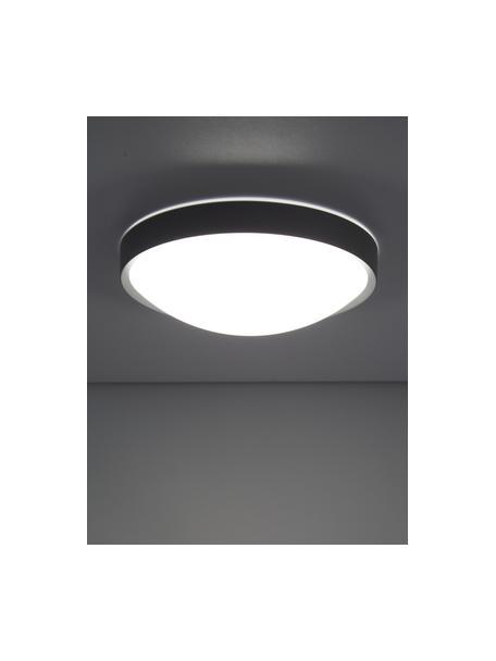 Kleines LED-Panel Altus, Diffusorscheibe: Kunststoff, Grau, Ø 30 x H 9 cm