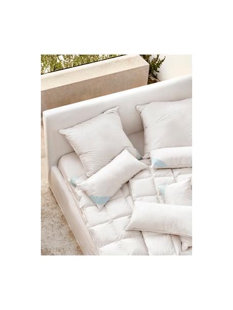 Poduszka z pierza Comfort, średnio twarda, Biały z turkusową satynową lamówką, S 40 x D 80 cm