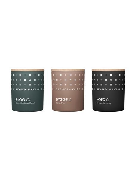 Set 3 candele profumate Hibernation, Contenitore: vetro, Coperchio: legno di betulla, Scatola: cartone, Multicolore, Larg. 5 x Alt. 7 cm