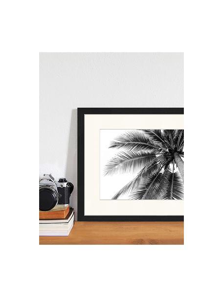 Oprawiony druk cyfrowy Coconut Palm Tree, Czarny, biały, S 43 x W 33 cm