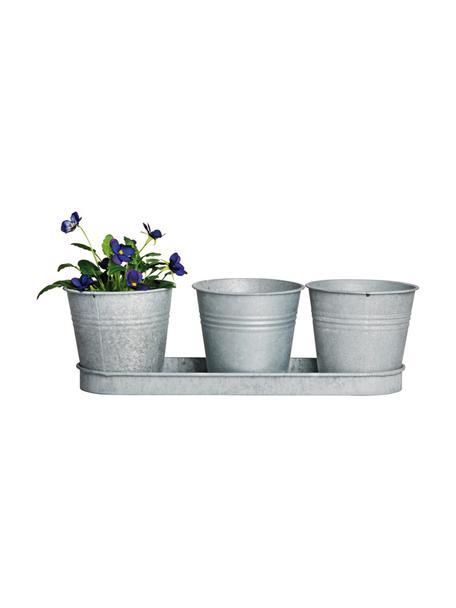Kleine plantenpottenset Cina uit zink, 4-delig, Metaal, Metaalkleurig, 33 x 11 cm